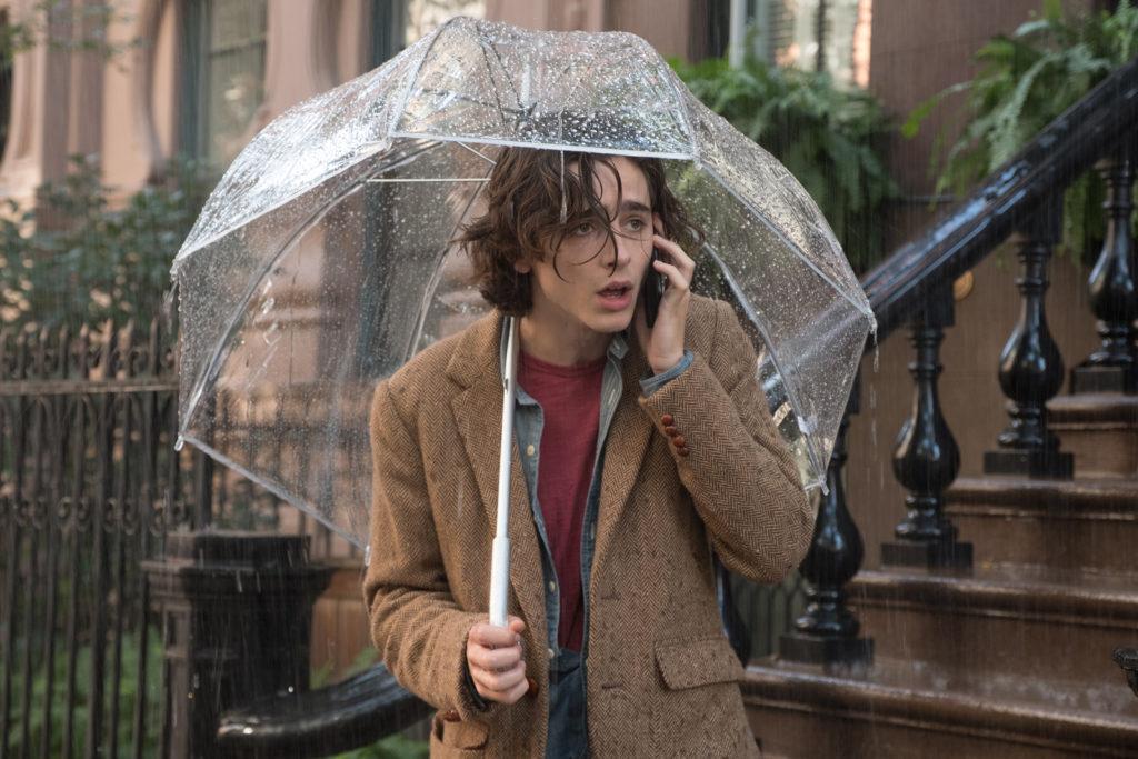Timothée Chalamet dans le film Un Jour de Pluie à New York